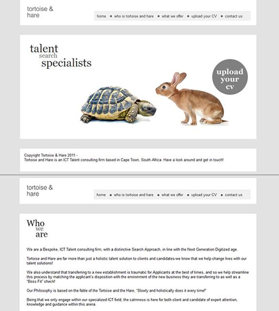 tortoiseandhare website design